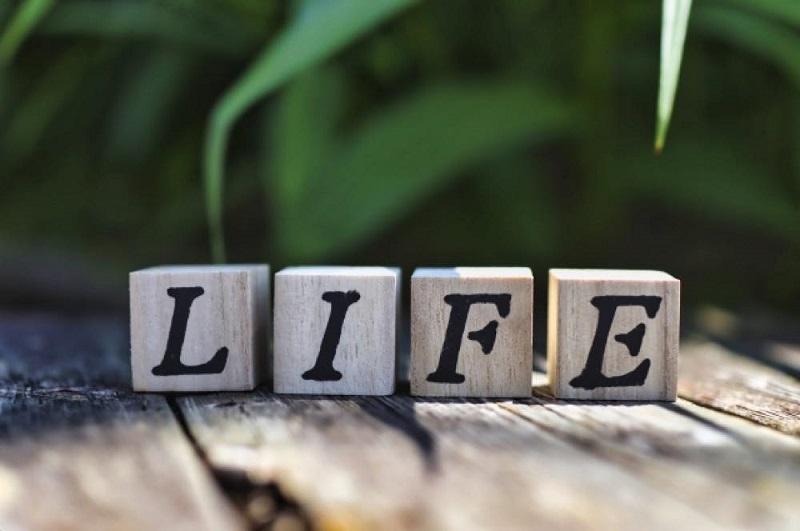 木のサイコロに書かれたLIFEの文字