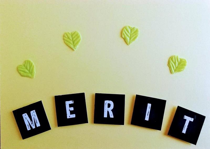 MERITの文字と緑の葉